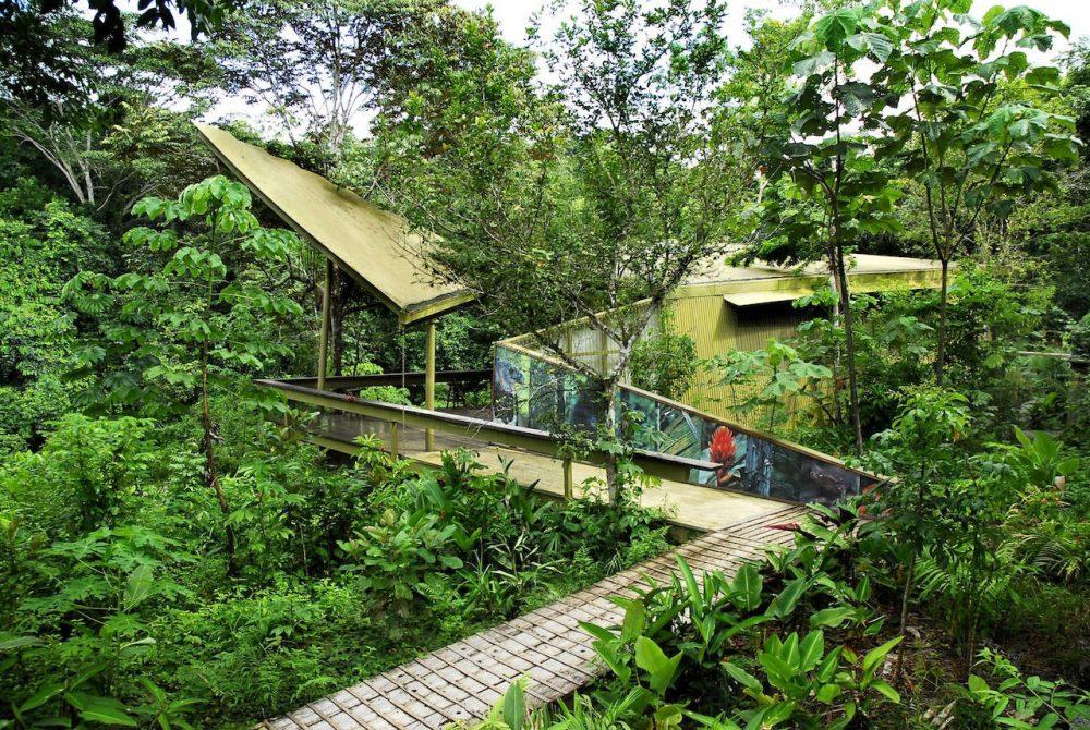 Paga $6 por una entrada para residentes para Panamá Rainforest Discovery Center (el valor corriente es $12). Hay opciones de entrada para extranjeros y niños.